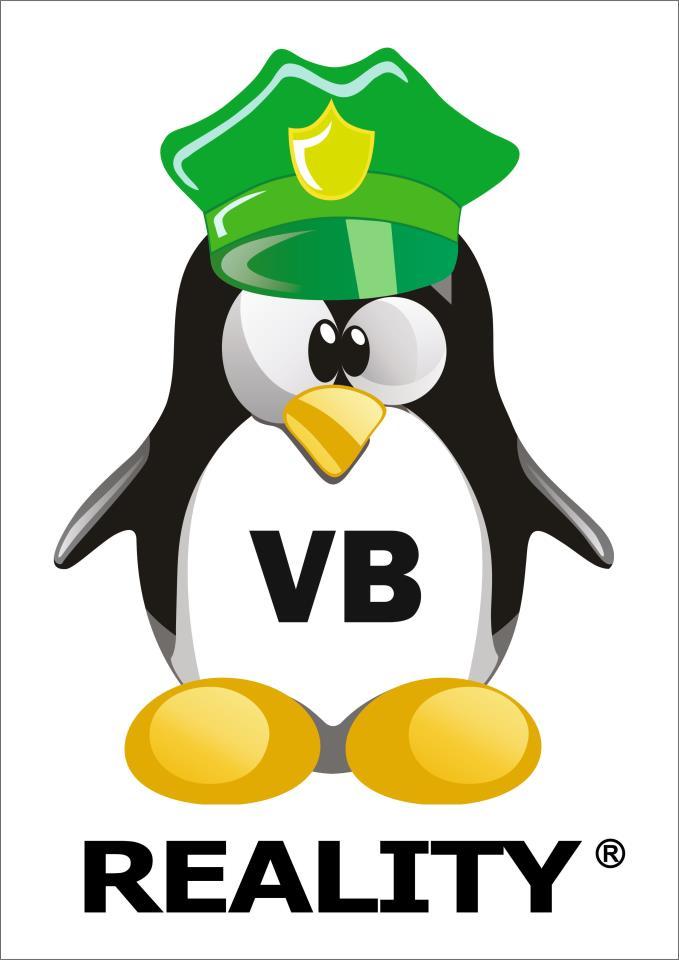 vb-reality-maskot